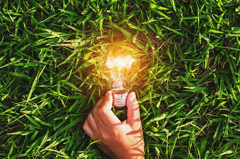 Business Renewable