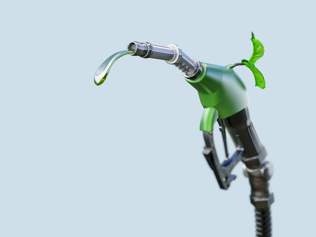 Biofuel Enery